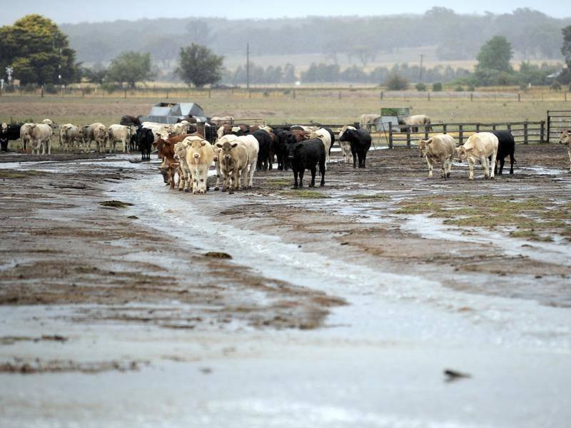 Rural NSW Floods